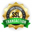 Secure transaction badge — Stok Vektör