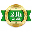 Golden green 24 hour service button — Stock Vector