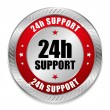 Red 24 hour support button — Stock Vector