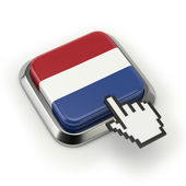Netherlands flag button — Stock Photo