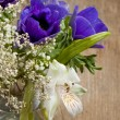 Bouquet of blue anemones - Stock Photo