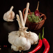 Bunch of garlic, chili pepper and thyme - Stock Photo