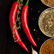 Red hot chili peppers and spices — Stock Photo #20032983