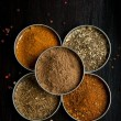 Mix of the spices - Stock fotografie