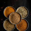 Mix of the spices - Stock Photo