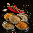 Mix of the spices with chili peppers - Foto de Stock