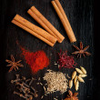 Mix of the spices - Foto de Stock