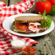 Fresh sandwich with sauces — Stock Photo