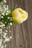 Bouquet with yellow tulip and white flowers — Stock Photo