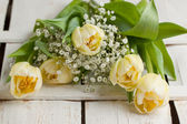 Букет из белых тюльпанов — Стоковое фото