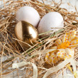 Stock Photo: Easter eggs in nest