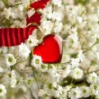 Heart and flowers - Stockfoto