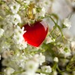 Heart and flowers — Stock Photo #20046391