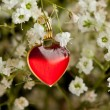 Heart and flowers - Stock fotografie