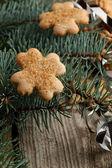 Christmas homemade cookies — Stock Photo