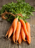 Fresh carrots — Stock Photo