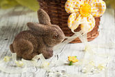 Easter rabbit — Foto Stock