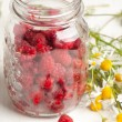 Fresh ripe raspberries and camomile flowers — Stockfoto