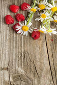 Fresh ripe raspberries and camomile flowers — Stock Photo