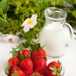 Plate with fresh strawberries with milk - Stock Photo