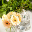 Bunch of gerbera flower with old vintage cage — Stock Photo