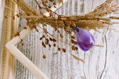 Dry wreath with purple crocus flower — Стоковое фото
