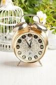 古い目覚まし時計やヴィンテージのケージ — ストック写真