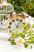 Old alarm-clock with flowers — Stock Photo