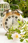 Old alarm-clock with wild rose — Stock Photo