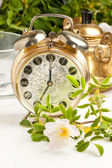 Old alarm-clock and teapot with flowers — Stock Photo
