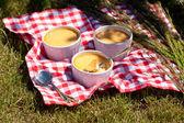 Vanilla cream dessert — Stock Photo