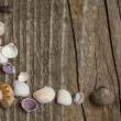 Wooden background with sea shells - Stock Photo
