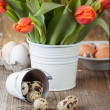 Quail egg with and bucket of flowers — Stock Photo
