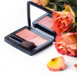 Blusher and roses over white — Stok fotoğraf