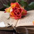 Orange rose with old book and glasses - Stock Photo