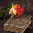 Orange rose with old book — Stock Photo