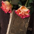 Orange roses with old book — Stock Photo