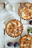 Top view on delicious little tarts with fresh plums — Stock Photo