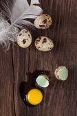 сломанный перепелиное яйцо с протекаемым желток — Стоковое фото