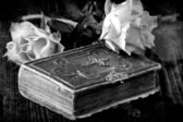 Wet roses on old brown wooden table with old bible book — Stock Photo
