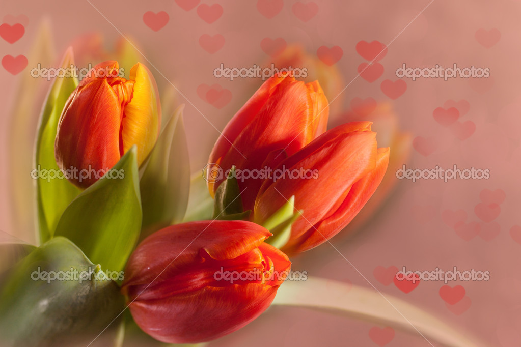 Bouquet of beautiful red tulips on pink blur background with hearts — Stock Photo #20096757
