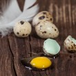 Broken quail egg with the leaked yolk - Stock Photo