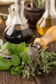 Oil and vinegar, gralic, knife with herb — Stock Photo