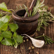 Garlic and herbs in mortar  — Stock Photo