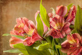 Bouquet of red lily — Stock Photo