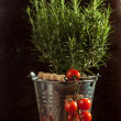Vegetables in metal bucket - Stock Photo