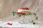 Cake with redcurrant — Stock Photo