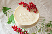 Cake with redcurrant — Stock Photo