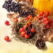 Autumn card with berries — Stock Photo #31172373