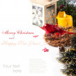 Christmas card with red bird — Stock fotografie